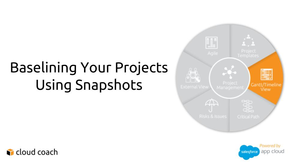 TWO MINUTE DRILL Baselining your Projects Using Snapshots