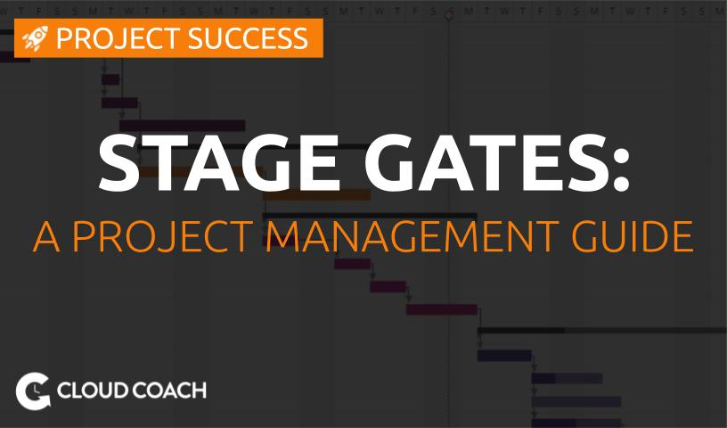 The stage gate process: a project management guide